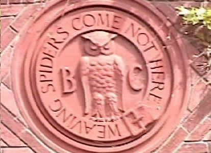 סמל הבוהמיאן גרוב