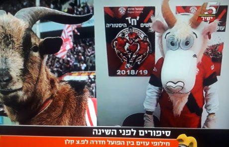 חילופי עזים בכדורגל הישראלי