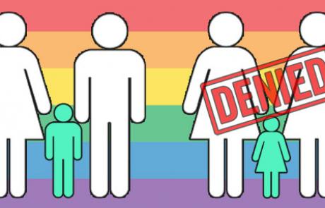 המדינה מתנגדת לאימוץ של חד-מיניים?